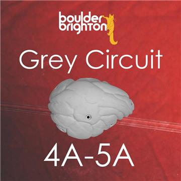 Grey Circuit reset
